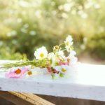 四月一日の花嫁